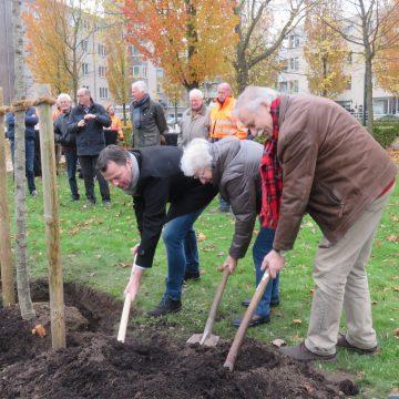 Gildebor plant sierappel tijdens Boomplantfeestje in Hengelo