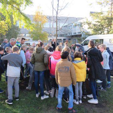 Leerlingen Willemschool helpen Gildebor bij planten sierappel