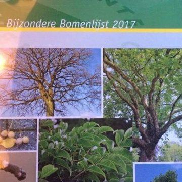 Gildebor betrokken bij samenstellen van Bijzondere Bomenlijst gemeente Hengelo
